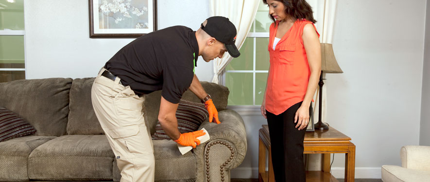 Davenport, IA carpet upholstery cleaning